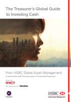 The Treasurer's Global Guide to Investing Corporate Cash 2017