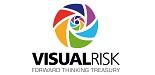 VisualRisk