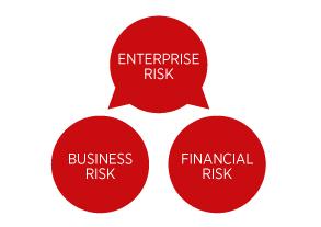 Enterprise Risk Business risk Financial risk